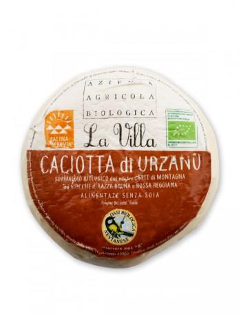 Caciotta Bio di Urzano - La Villa 450 g ca.